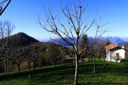 Monte Canto visto dai prati di Santa Barbara copia