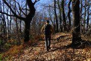 Sentiero-891, tratto dal Monte Canto al Crocione