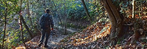 Sentiero 893 Fontanella Sotto il Monte