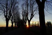 Ultimi raggi di sole sul viale alberato e la Madonna di Prada