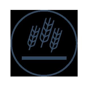 Promoisola | Aziende Agricole