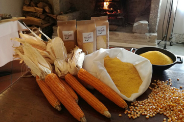 Prodotti tipici Isola Bergamasca | La farina