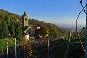 Abbazia di S. Egidio (450 m)-2
