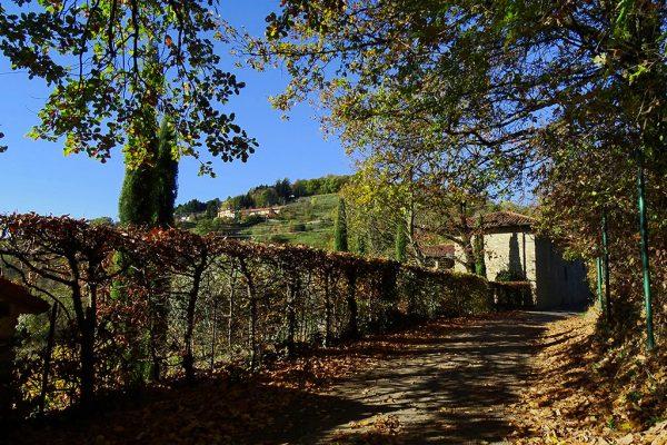Ca' Bolis (387 m) con vista in Cabergnino