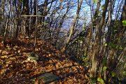 Croce di vetta del Monte Canto (688m)