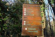 Mezza costa sul sentiero raccordo 891-893 da Porcile a Roccolo